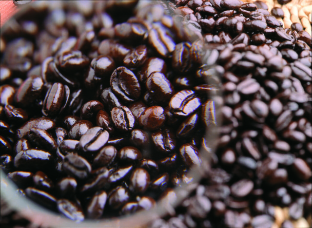 実は歴史が古い!ベストな環境で育てられた「メキシココーヒー」を楽しもう