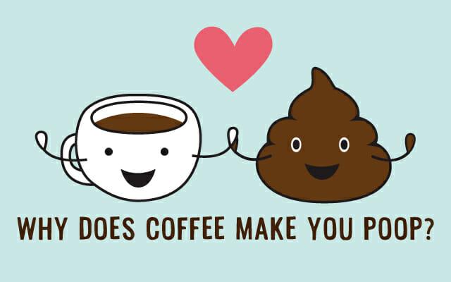 コーヒーとうんこの不思議な関係